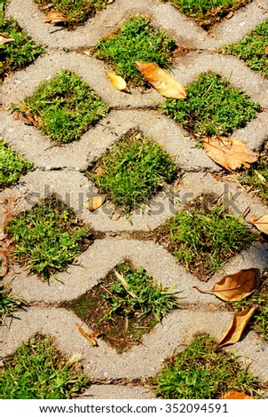 Turf stone used to pave a residential driveway - stock photo