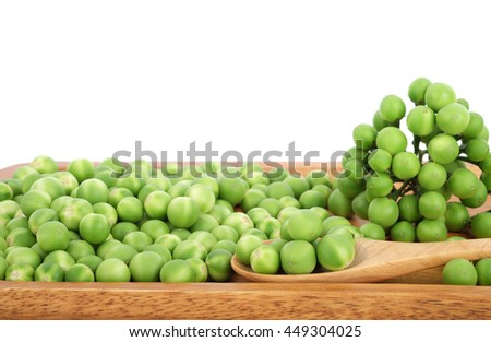 turkey berry on wooden plate isolated in white background