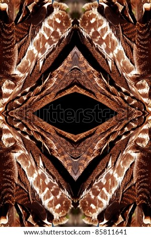 turkey feathers abstract background - stock photo