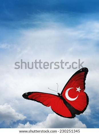 Turkey flag butterfly flying on sky background - stock photo