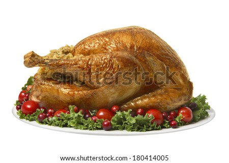 Turkey for Thanksgiving dinner on white  - stock photo