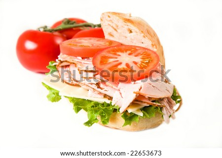 Turkey Sandwich Isolated on White