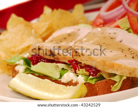 Turkey sandwich with potato chips and a dill pickle - stock photo