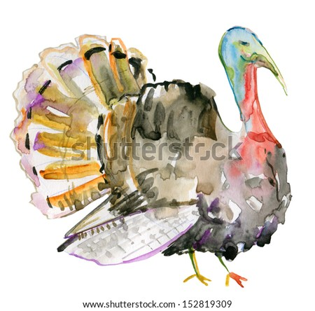 Turkey Watercolor Painting illustration.Thanks giving - stock photo