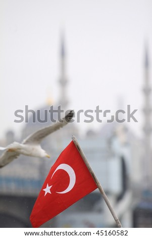 Turkish Flag and Mosque