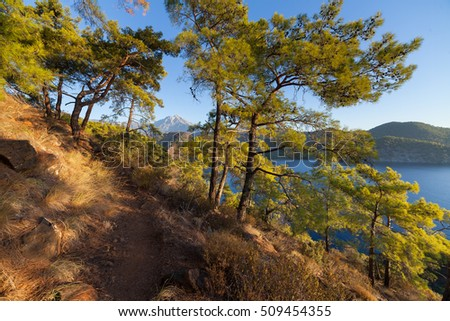 Turkish landscape with Olympos mountain, beach  green forest