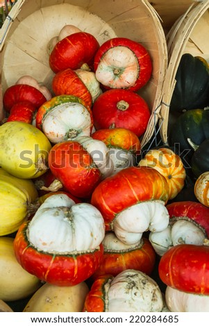 Turks Turban Winter Squash also called Mexican Hat squash - stock photo
