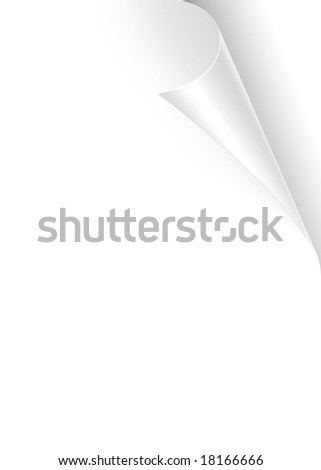 Turning empty white book page with curl on top right - stock photo