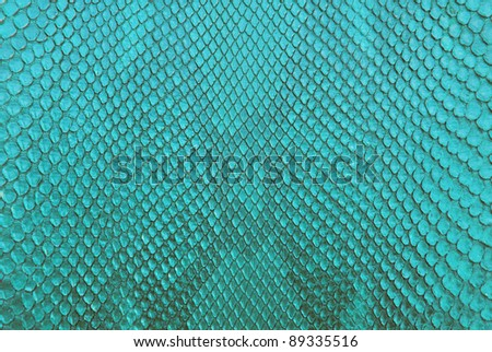 Turqouise python snake skin texture background. - stock photo