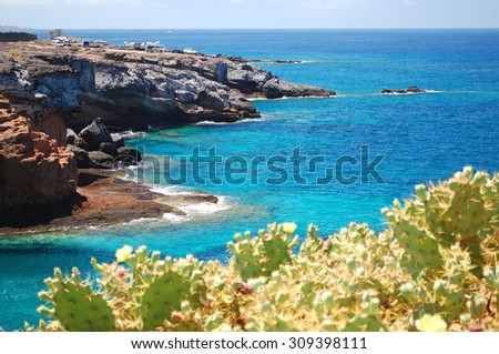 Turquoise bay and volcanic cliffs in Playa Paraiso on Tenerife, Spain