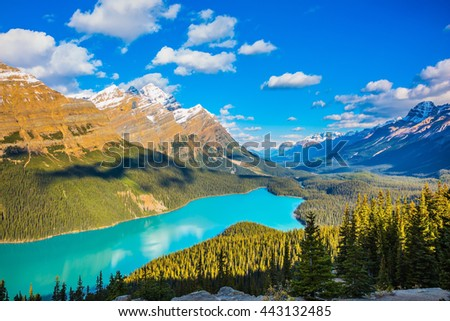 """Turquoise Lake Peyto in Banff National Park, Canada. Mountain Lake as a """"fox head"""" is popular among tourists - stock photo"""