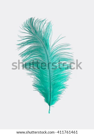 Turquoise Ostrich Feather