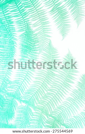 turquoise palm leaves - stock photo