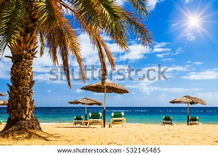 Turquoise sea, deckchairs, yellow sand and palms, sun, very beautiful nature