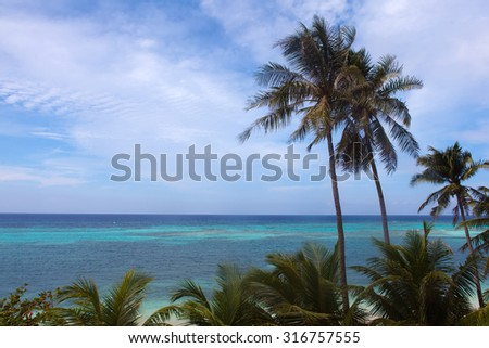 Turquoise view of the sea with palm trees, tropical island white beach, beautiful vacation spot, Anda Beach, Bohol, Philippines