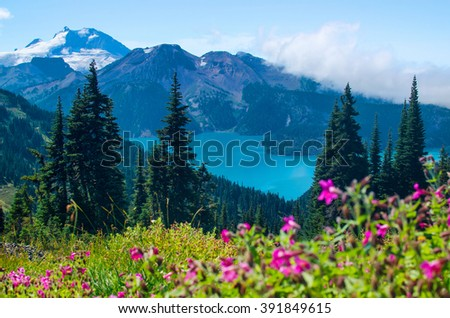 Turquoise water of Garibaldi Lake in Whistler, BC. As seen from blooming alpine meadows above. - stock photo