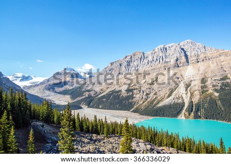 turquoise waters of peyto lake in the middle of the forests and peaks of the rocky mountains of alberta canada