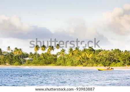 Turtle Beach, Tobago - stock photo