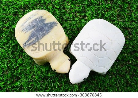 Turtle lovers - stock photo