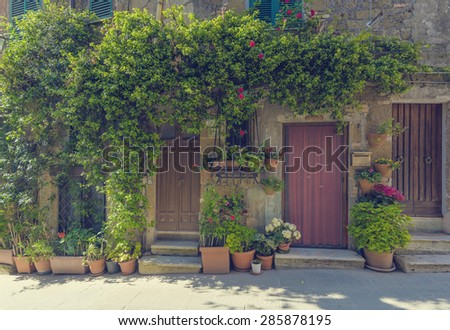 Tuscan door with plants in the Italian medieval village - stock photo