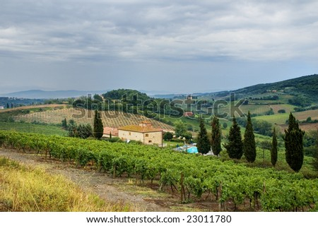 Tuscan hills with house, vineyard and cypress trees - stock photo