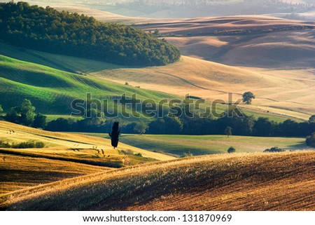 Tuscan Landscape, hills of meadow and green - stock photo