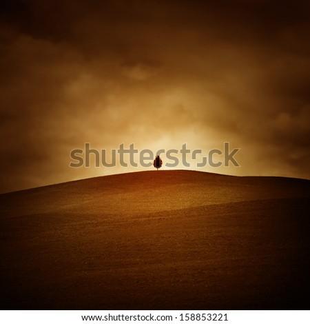 Tuscan landscape with single tree on horizon. - stock photo