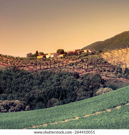 Tuscan Landscape with Vineyards and Olive Groves at Sunset, Retro Image Filtered Style - stock photo