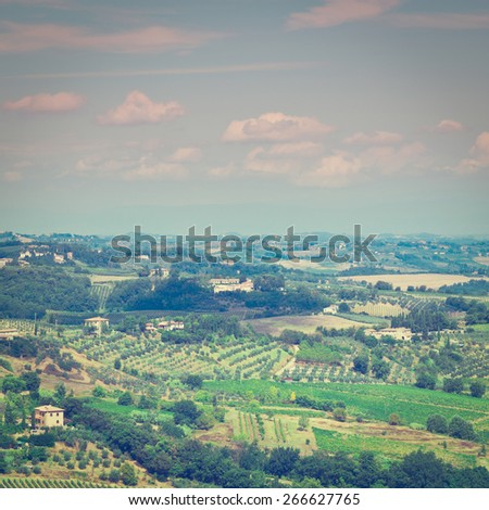 Tuscan Landscape with Vineyards and Olive Groves, Instagram Effect - stock photo