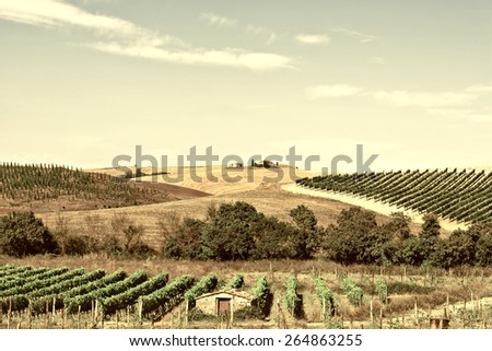 Tuscan Landscape with Vineyards, Retro Image Filtered Style - stock photo