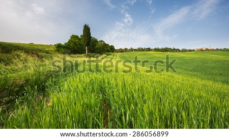 Tuscan place in a rural landscape - stock photo