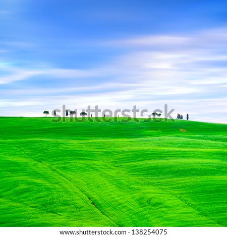 Tuscany country landscape, cypress trees and green fields. San Quirico Orcia, Italy, Europe. - stock photo