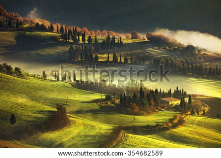 Tuscany foggy morning, farmland and cypress trees country landscape. Italy, Europe.