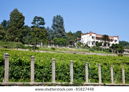 Tuscany, Italy. Italian luxury villa in the country, close to a Lambrusco vineyard - stock photo
