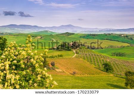 Tuscany, Italy. Landscape - stock photo