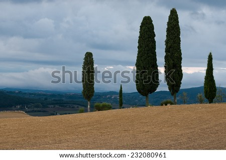 Tuscany landscape in Autumn, Italy