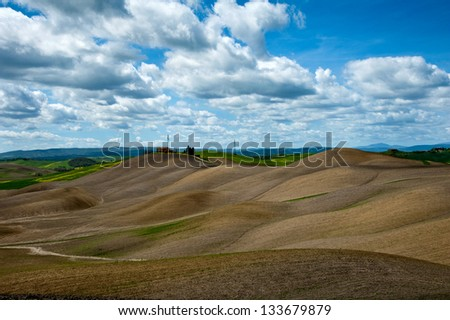 Tuscany landscape with plowed hills in Siena district/Tuscany Hills/Tuscany,Italy
