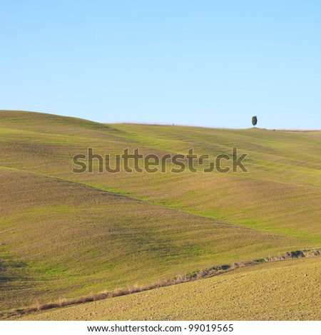 Tuscany landscape with soft rolling hills and a lonely tree. Color image was taken in Val d'Orcia, Crete Senesi near Siena. - stock photo