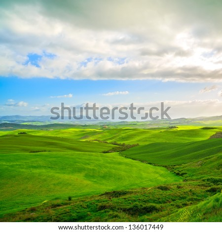 Tuscany, rural landscape of Tuscany with yellow and green field. Rolling hills near Volterra, Italy. Europe.