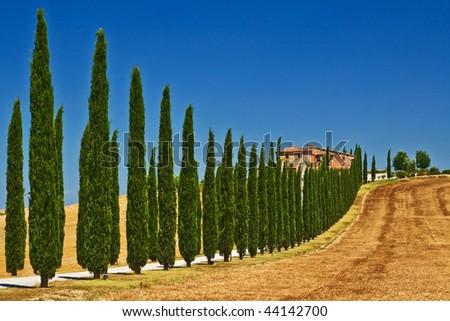 Tuscany view - stock photo