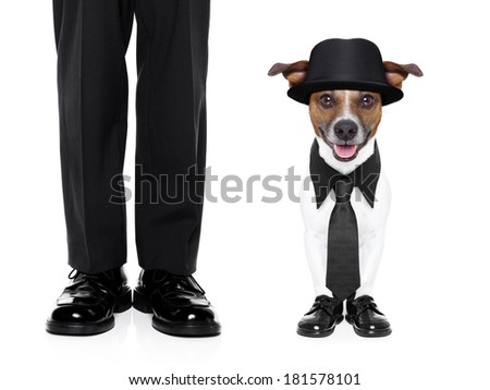 tuxedo dog and owner standing side by side