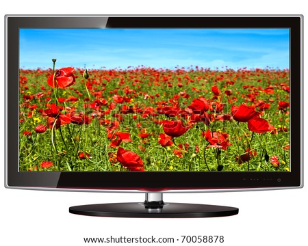 TV flat screen lcd, plasma with wild flowers on screen. - stock photo