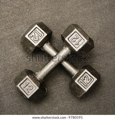 Twelve pound hand weights still life. - stock photo