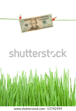 Twenty dollars hang on the rope with pegs on the green grass. Isolated on white background - stock photo