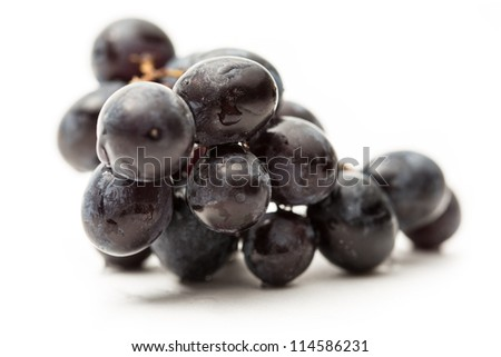 Twig of black grape on white - stock photo