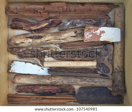 twigs and wood pieces polished by the sea - stock photo