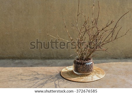 Twigs in the vase on morning.Morning light .Closeup of Twigs - shallow DOF. Dried twigs in a small basket , idea for budget home decoration. - stock photo