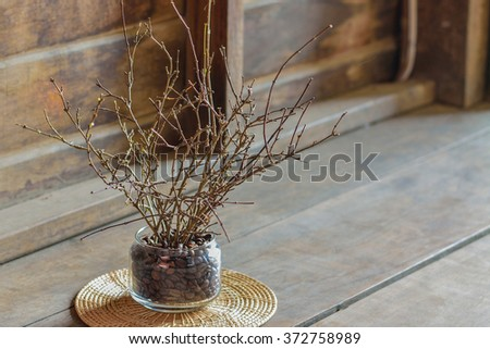 Twigs in the vase on morning.Morning light.Natural light.Closeup of Twigs - shallow dof. Dried twigs in a small basket , idea for budget home decoration.Wood back ground. - stock photo