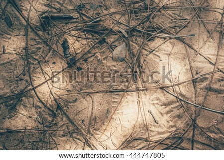 Twigs on the ground(dark tone) - stock photo