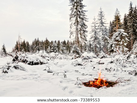 Twilight in the forest. Snow around and only campfire lets survive tough time. - stock photo